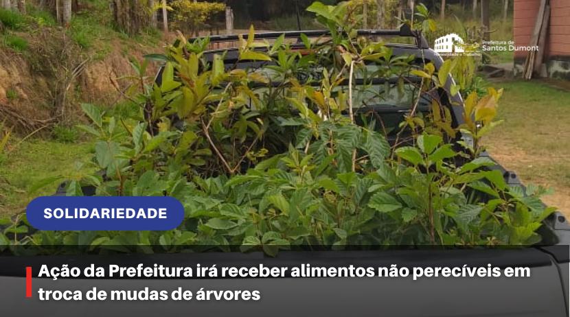 Ação da Prefeitura irá receber alimentos não perecíveis em troca de mudas de árvores