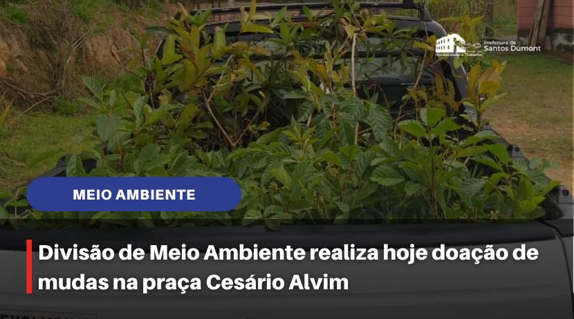 Meio Ambiente distribui mudas na praça Cesário Alvim